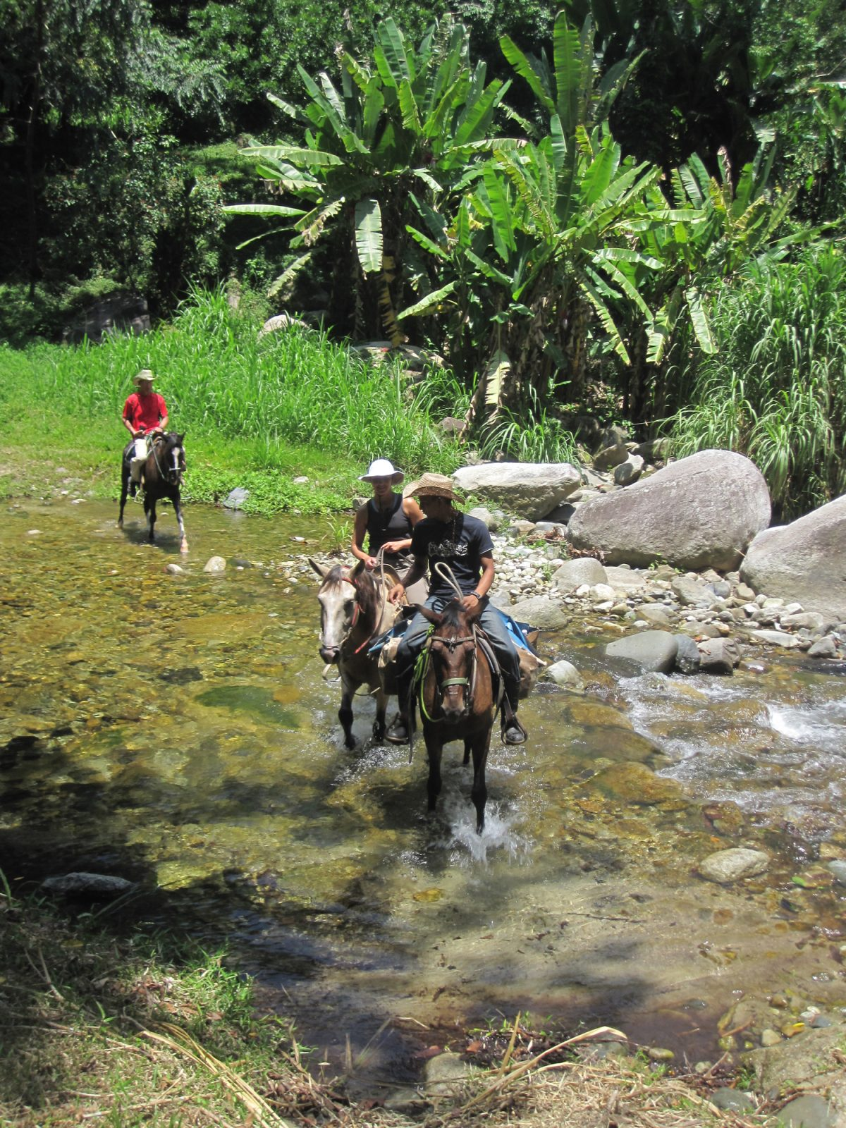 Horseback Riding in the Cangrejal Valley
